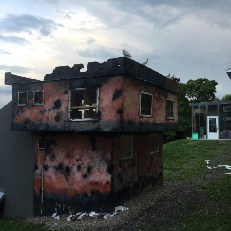 LIVING HOUSE, 2016
